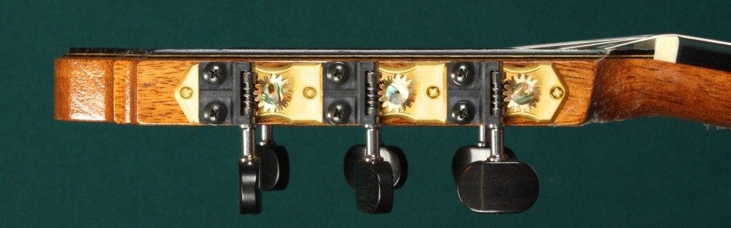 Many have known for years about the superb functionality of Gilbert tuners. This image shows how uniquely attractive they've become, too. Good work, Greg Matonis!